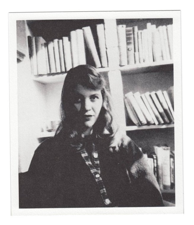 sylvia plath portrait from nyt.jpg